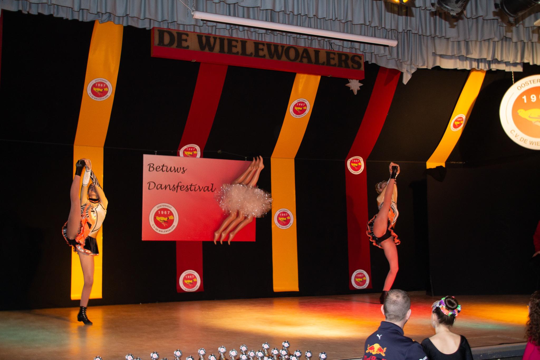Foto's bezoek 15e Betuwse Dansgardefestival online!